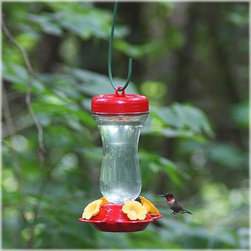 Perky Pet 16 oz. Glass Top Fill Hummingbird Feeder - A Beatles-sounding tune of We all drink from a yellow bird feeder, a yellow bird feeder, a yellow bird feeder – that's what the hummingbirds in your neighborhood might be singing as they sip nectar from the Perky Pet 16 oz. Glass Top Fill Hummingbird Feeder. Its four yellow, soft flower feeding ports are more life-like than ever, which make this feeder attractive to our fluttering feathered friends. Best of all, this glass hummingbird feeder features a new technology that allows you to simply open the cap, pour in the nectar, and that's it. Traditional bottom fill feeders only give you a small opening in the bottom of the feeder to pour your nectar, but the convenient wide mouth opening of this top fill safeguards against spilling while filling, which let's you sit back and enjoy the action. And don't worry about those those pesky party-crashing ants – the built-in ant moat on the cap has the ability to be filled with water, blocking the ants from accessing the nectar.About Woodstream Corp With more than 150 years of experience, Woodstream Corp is privately-held company and a leading manufacturer of quality-branded products for pets and wildlife, natural solutions for lawns and gardens, wild bird feeding products, and outdoor living decor. Woodstream's growth has been fueled by a consumer-driven approach to product development, focusing on innovation, quality, safety, and a commitment to an industry-leading level of service to retailers and consumers. For example, a key focus for Woodstream Corp. has been to add organic and/or environmentally friendly products. It has taken a pro-active approach to preserve our environment and wild animals. About Birdfeeders.com Whether you're an experienced hobbyist or an amateur bird watcher, there is a feeder to fit your style at Birdfeeders.com, where you will find a substantial selection of quality bird feeding products at competitive prices. If you love watching birds in your backyard and want to attract more, visit Birdfeeders.com for helpful bird watching and bird feeding advice. You can access the company's popular bird library for additional information about specific birds, and then browse its collection of quality bird feeders, feeder accessories, bird baths, and bird houses.