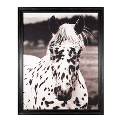 Kathy Kuo Home - Hyden Rustic Lodge Modern Spotted Horse Photo Wall Art - Framed - Seeing spots. A must-have addition to your art collection, this playful portrait will add instant impact to your walls with its bold, contrasting subject matter. Perfect for anyone, but especially moving for horse lovers.