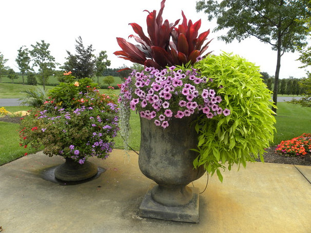 Traditional  by Smalls Landscaping