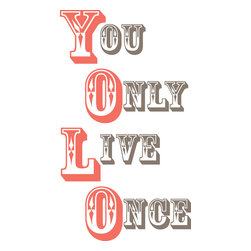 WallPops - Yolo - You Only Live Once Wall Quote Decals - You Only Live Once, that's the motto! Keeping these words on the wall is an affirmation to live life to the fullest! This popular quote makes a great statement and would look sharp in a dorm room!