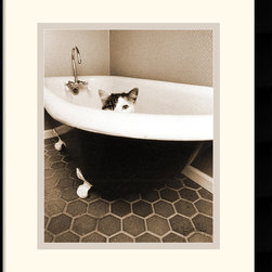 Amanti Art - Kitty III Framed Print by Jim Dratfield - Where could kitty be hiding? A fun find for cat lovers anywhere by photographer Jim Dratfield.