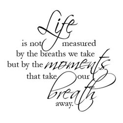 WallQuotes.com - Life is not Measured Scriptina Wall Quotes Decal, Black - Life is not measured by the number of breaths we take but rather by the number of moments that take our breath away. Remember to look for those breath-taking moments with this inspirational wall decal. Perfect for any room in the house this quote is sure to brighten anyone's mood. have your breath taken away by this wonderful wall quote!