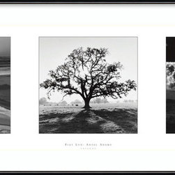 "Amanti Art - 'Fiat Lux: Trilogy' Framed Print by Ansel Adams - Fifty years ago, famed photographer Ansel Adams was commissioned by the University of California to shoot the campus in his iconic black and white style. The photographic essay was named Fiat Lux, ""Let there be light,"" after the university's motto. This trio of the most evocative shots from that collection is simply stunning, and comes framed and ready to hang on your wall."