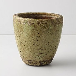 """Anthropologie - Aged Herb Pot, Small - TerracottaWipe with a damp cloth3.5""""H, 4.5"""" diameterImported"""