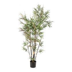 Vickerman - 7' Potted Black Bamboo X10 1735 Leaves - 7' Potted Black Bamboo Tree X 10 W/1735 Leaves
