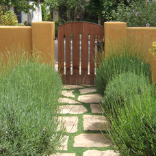 Traditional  by Outer space Landscape Architecture