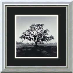 "Amanti Art - ""Oak Tree, Sunrise, Northern California, 1966"" Framed Print by Ansel Adams - Black and white photography brings elegance and depth to your decor. Add this gallery quality print by Ansel Adams — a name synonymous with the art of nature—to display your appreciation for the beauty of the world around us."