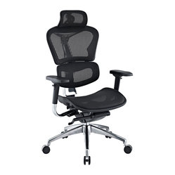 Lift Mesh Ergonomic Executive Chair with Headrest in Black