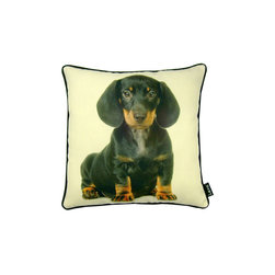 Lava - Black Dachshund 16 x 16 Pillow - 100% polyester cover and fill. Cotton cording. Made in USA. Spot clean only