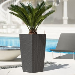 Square Lechuza Cubico Cottage Self-Watering Resin Planter, Granite - I love tall, modern planters. Add a palm plant for an effortless tropical look.