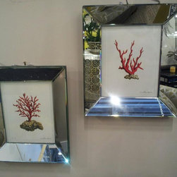 Coral Pictures with Mirror Frames - 6 different coral pictures