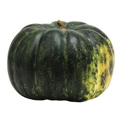 Home Decorators Collection - Faux Hubbard Squash - Our Faux Hubbard Squash features expertly painted details in shades of green. As appealing as the real thing, this squash won't go bad. Pair it with a faux pumpkin or assemble a group of artificial vegetables for your autumn holiday centerpiece. Crafted of resin. Painted latex finish.