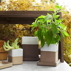 Modern Outdoor Pots And Planters by West Elm