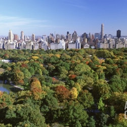 Central Park and Manhattan Buildings -