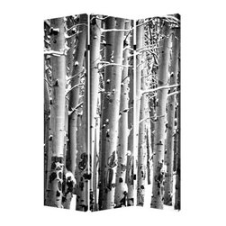Screen Gems - Screen Gems Birch Screen - This is a 3 panel screen printed on canvas. The screen is two sided with different and complementary images on each side. It is light weight and very easy to move. The screen also has inspirational wall decor applications.