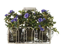 Home Decorators Collection - Roses in Clay Pot and Iron Basket - Set of 3 - More than any other flower these Roses in a Clay Pot housed in a decorative iron display basket, beckons the eye, literally demanding a closer inspection. Delicate blooms adorn fresh greens giving these beauties an authentic look that will have you stopping to smell them time and time again. Iron basket with clay pot. Available in a variety of colors.