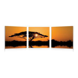 "Baxton Studio - Baxton Studio Savannah Sunset Mounted Photography Print Triptych - A riotous orange sky showcases the intricate beauty of an Acacia's boughs in this vivid mounted photograph. Divided into a triptych display, the photo is printed on three waterproof vinyl sheets before being secured to three separate MDF wood frames, which are ready to hang. Manufactured in China, this contemporary wall art set is fully assembled and does not include mounting hardware. To clean, we recommend dry dusting.Dimensions (each): 20""H x 20"" W x 1"" Dh"