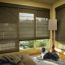 Transitional  by Accent Window Fashions LLC