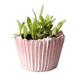 DIY Cupcake Planter Kit - Shaped like a ridged cupcake liner, this planter is cast from a special blend of concrete made from materials that are native to the mid-Atlantic United States. It's both green and yummy looking.