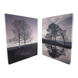 Pair of Black/White Tree Art Photography Printed Canvases 16 X 20 In. - This pair of vertical canvases showcases nature`s art, via black and white photography. Each wall hanging measures 16 inches wide, 20 inches tall, 1 1/2 inches deep, mounts to the wall with a single nail or screw by the metal picture hanger on the back. This set is a wonderful addition to homes or offices, and it makes a wonderful gift for nature photography enthusiasts.