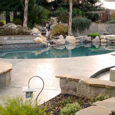Modern Swimming Pools And Spas by Paradise Pools