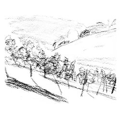 """Ann Rea - Bring home the Napa Valley with """"Above Valley"""" charcoal on paper by Ann Rea - """"I love the stark new Howell Mountain vines against the California sky."""" -Ann Rea"""
