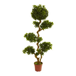 Nearly Natural - Nearly Natural 5' Pittispourm UV Resistant (Indoor/Outdoor) - Here's one of the more unusual and striking decorating options you'll come across. This Pittispourm tree stands a robust five feet in height, it's trunks bending and twisting upward, with several areas of leafy bloom that draw the eye and ignite curiosity. This is an ideal home or office decoration, and is fully UV resistant, so you can put it indoors or out. Makes a fine gift as well.