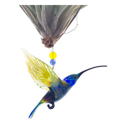 Spirit Pieces - Flying Lampwork Glass Hummingbird Figurine and  Air Plant Living Ornament - This wonderfully alive home decor accent item is great for windows, mantles or door thresholds.  Hang off a bird house or bird feeder and watch the birds react!