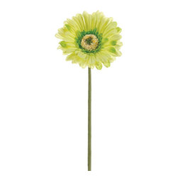 Silk Plants Direct - Silk Plants Direct Large Gerbera Daisy (Pack of 12) - Green - Pack of 12. Silk Plants Direct specializes in manufacturing, design and supply of the most life-like, premium quality artificial plants, trees, flowers, arrangements, topiaries and containers for home, office and commercial use. Our Large Gerbera Daisy includes the following: