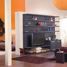 Contemporary Media Storage by California Closets