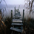 Wallmonkeys Wall Decals - Weathered Dock in Fog Wall Mural - 72 Inches W x 48 Inches H - Easy to apply - simply peel and stick!