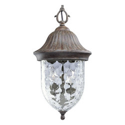 Progress Lighting - Progress Lighting P5529-87 Coventry Two-Light Outdoor Hanging Lantern with Optic - Add outdoor style with this quirky but classic acorn styled outdoor pendant from the Coventry collection. Featuring optic hammered glass and 120 watts of powerful light output, this  pendant is the perfect blend of functionality and style.Features: