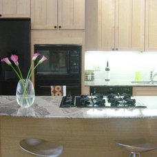 Modern Kitchen undercabinet lighting and upgraded appliances