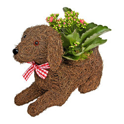 luludi living frames - Luludi Living Frame Puppy Pal - our whimsical rattan seated puppy planter comes with a charming display of pre-planted kalanchoes and moss with a decorative bow. made of rich chocolate woven rattan, this adorable living frame pup makes a wonderfully unique pet lover and housewarming gift.