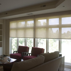 Regency - Solar roller shades let light in while blocking out the UVA/UVB rays,heat in the summer,cold in the winter and glare. A light simple maintenance solution for a window or sliding door. Great for a large application as it can be motorized..