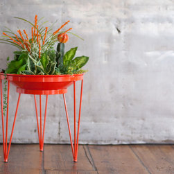 Steel Life's Shallow Root Vessel | Citrus (orange) - An ideal sanctuary for all your succulents and water-wise plants.  This modern planter's unique design eliminates the need for excessive soil and water that would be needed to fill a deeper container.  Sustainable, efficient and unparalleled style~this planter is a game changer in the modern garden world.