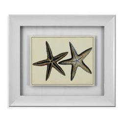 Bassett Mirror - Bassett Mirror Framed Under Glass Art, Antique Blue Starfish I - Antique Blue Starfish I