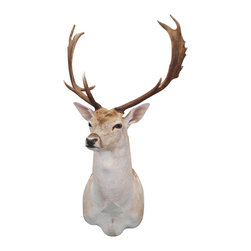Walls Need Love - Noble Buck, Adhesive Wall Decal - The buck stops here with this noble buck adhesive taxidermy friend. The proud, regally horned male deer is the quintessence of hunting success. This guy can grace your wall without a shot being fired.
