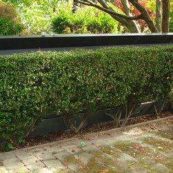 Fantastic Fence's - Metal Roof Specialties, Inc. - Corrugated metal wall panel in a Dark Metallic Silver finish with a Black coping cap.