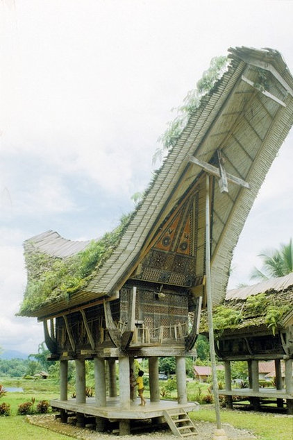 Tropical  Houses from around the world