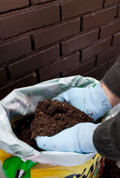 How To Prepare Your Soil For New Healthy Sod | The Masters Lawn Care