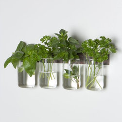 Manchester Glass Set - This is such a fantastic idea!!! Easy access while cooking and these little glass containers will also keeps the herbs fresher for longer with the sip of water. You can also keep flowers in the them to bring a pop to the decor!