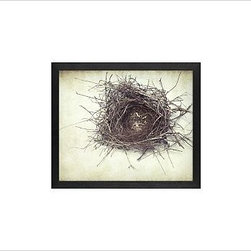 "Lupen Grainne Framed Print, Nest, No Mat, 11 x 13"", Black - This is an image of an abandoned nest the photographer found in an enormous passionflower vine. The photo is at once charming and haunting, conjuring up thoughts of flight and home. 13"" wide x 11"" high 20"" wide x 16"" high 42"" wide x 28"" high Alder wood frame. Black or white painted finish; or espresso stained finish. Beveled white mat is archival quality and acid-free. Available with or without a mat. {{link path='/shop/accessories-decor/pb-artist-gallery/artist-gallery-lupen-grainne/'}}Get to know Lupen Grainne.{{/link}}"