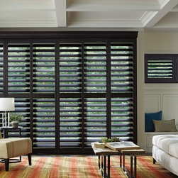 Shutters - Hunter Douglas Hardwood Shutters in the den