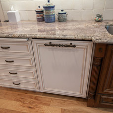 Eclectic Dishwashers by Kitchens Etc. of Ventura County