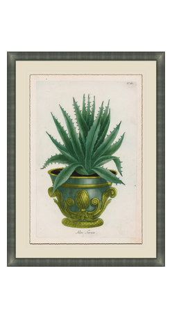 Soicher-Marin - Small Planters E - Giclee Print with a silver contemporary wood frame.  Print mounted on posterboard then floated on an off white mat.  Includes glass, eyes and wire. Made in the USA. Wipe down with damp cloth