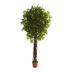 7.5' Ficus Tree UV Resistant (Indoor/Outdoor) - Here's a tree that really brings the forest home to you. Standing tall at seven and a half feet, this Ficus tree features twisting vines climbing the stout trunk, and explodes in a sea of green leaves (1764 in all). It's a delight, and is at home both indoors and out (and is UV resistant as well.) Plus, it'll never need water or care, making it the ideal home or office accent piece. Height= 7.5 Ft. x Width= 40 In. x Depth= 40 In.