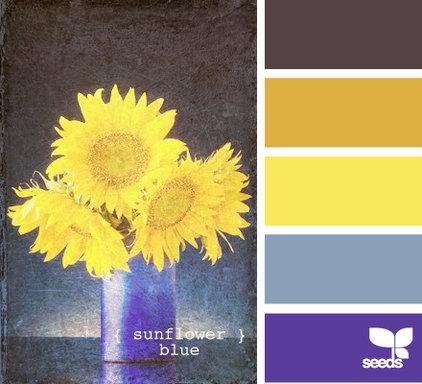 by design-seeds.com