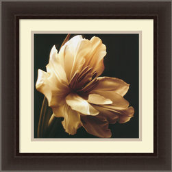 "Amanti Art - ""Timeless Grace I"" Framed Print by Charles Britt - Pure and perfect, this sepia print magnolia flower is a calming, centering addition to your space. Hang it in the bedroom or bath, light a magnolia-scented candle, and envelop yourself in the calming, timeless beauty of this magical flower in full bloom."