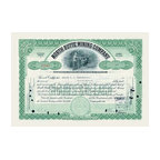 """Buyenlarge.com, Inc. - North Butte Mining Company- Gallery Wrapped Canvas Art 12"""" x 18"""" - Stock certificates are like currency, sharing value and beauty on the face.  This cancelled certificate captures a moment in history as technology advances and big business moves forward."""